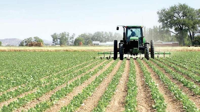 Ndryshimi i temperaturave ka ndikuar në zvogëlimin e rendimentit në të gjitha kulturat bujqësore