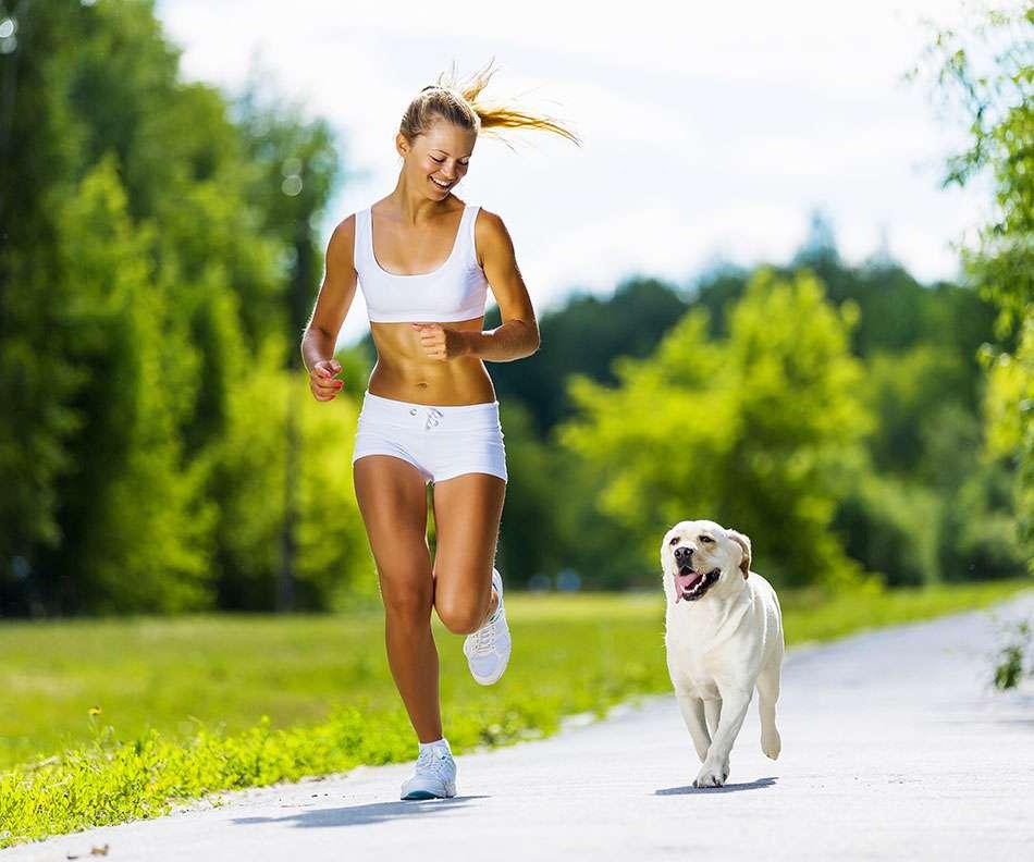 ndikimi-ne-shendet-i-mbajtjes-se-qenve