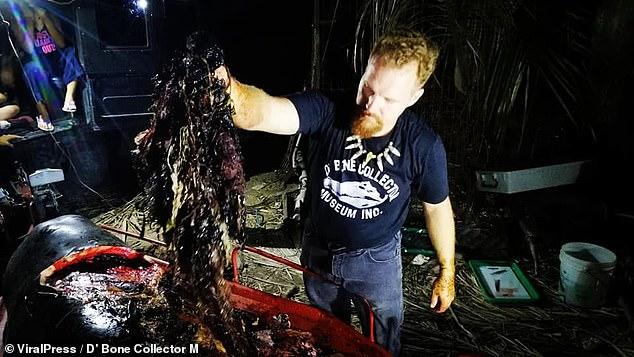 balenes-se-ngordhur-iu-gjet-40-kilograme-plastike-ne-bark