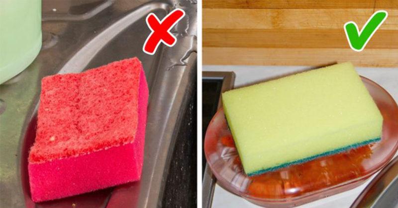 11 detaje të vogla në kuzhinë që zbulojnë një amvisë të paaftë